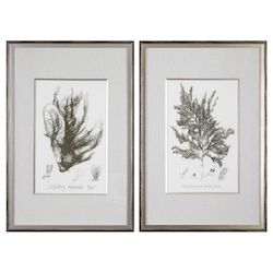 Uttermost Uttermost Sepia Seaweed Prints S/2