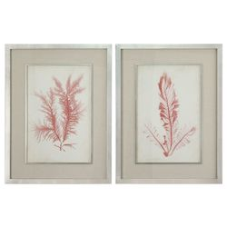 Uttermost Coral Sea Feathers Prints S/2