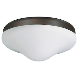 Two Light Ceiling Fan Light Kit