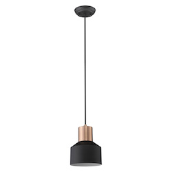 Trend Lighting TP30065BK Ingo 1-Light Matte Black Pendant