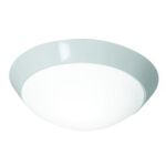 Access Opal Cobalt 3 Light Flush Mount Ceiling Fixture