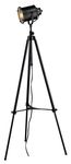 Dimond One Light Restoration Black Floor Lamp