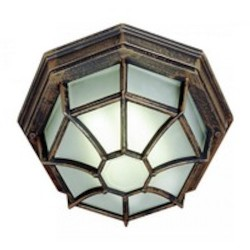 Trans Globe One Light Rust Frosted Spider Web Octagon Glass Outdoor Flush Mount