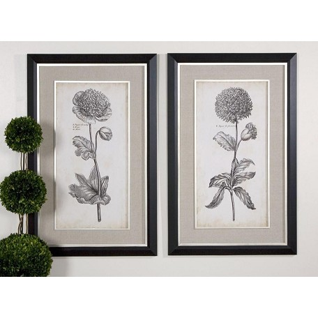 Uttermost Artwork Reproduction Singular Beauty I Ii Set Of 2 Wall Art