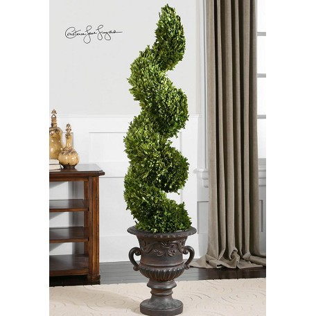 Uttermost Green / Aged Black Preserved Boxwood Spiral Topiary