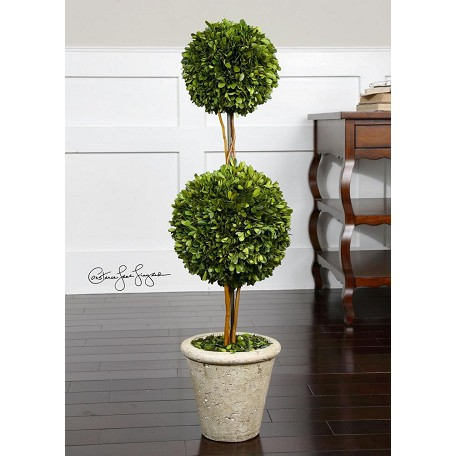 Uttermost Evergreen Preserved Boxwood Two Sphere Topiary Accessory