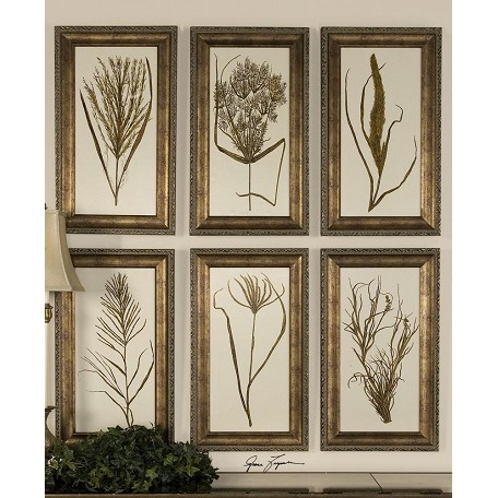 Uttermost Green, Brown Wheat Grass I, Ii, Iii, Iv, V & Vi Set Of 6 Framed Prints