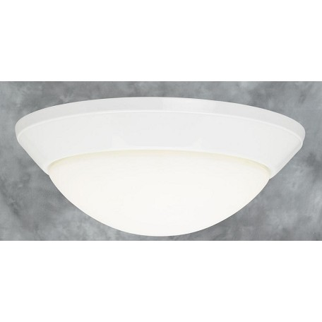 Forte Frosted Bowl Flush Mount